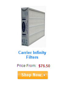 Carrier Infinity Filters